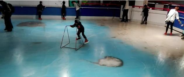 Giappone, esequie per i pesci sepolti nella pista di pattinaggio sul ghiaccio