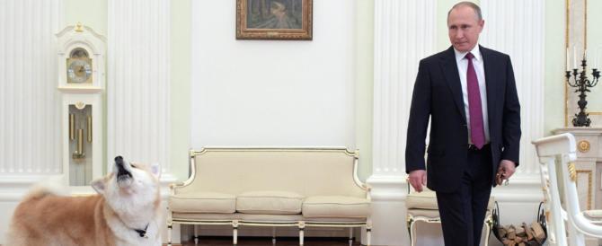 Putin fa gli auguri a Gentiloni ma soprattutto presenta il suo cane…