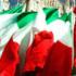 """Aggiornare il """"repertorio"""" della Destra: il vero patriottismo è sociale o non è"""