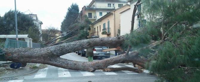 Disastro capitale, Roma in ginocchio per il maltempo tra allagamenti e alberi caduti