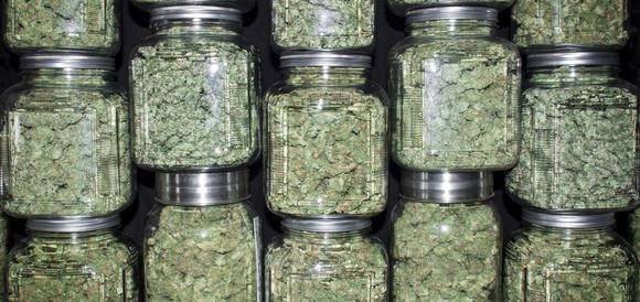 Marijuana in farmacia, è boom di richieste. Non c'erano dubbi….