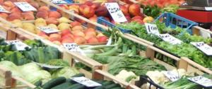Rape da 1 a 4 euro: agricoltura in ginocchio ma è allarme speculazioni