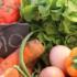 Torna la voglia di mangiare bene: ecco i piatti preferiti dagli italiani