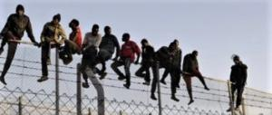 Santori (FdI): altri 31 milioni per i clandestini. Basta, il Lazio è saturo