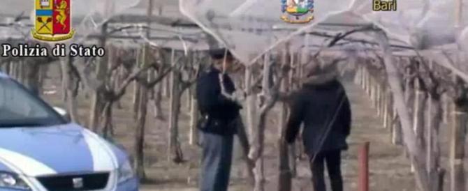 Caporalato, morì di fatica nei campi di Andria. Sei arresti in Puglia