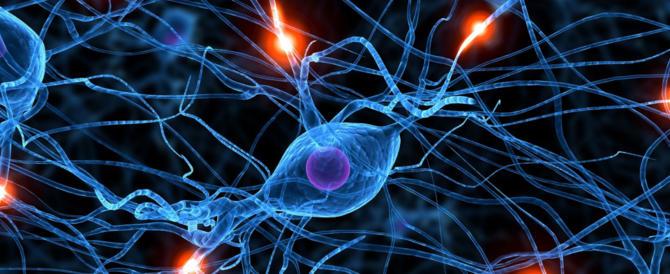 Scoperti i neuroni della calma, svelati i benefici della respirazione profonda