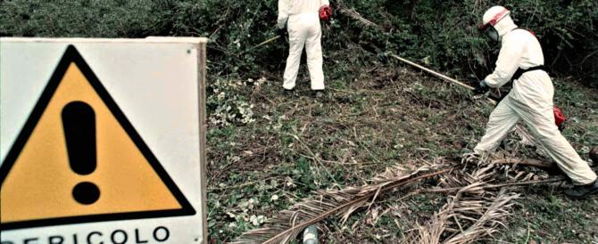 Lombardia, dalla Regione stanziamenti per rimuovere l'amianto dagli edifici