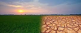 """Trump smantella anche la politica """"ambientalista"""" di Obama"""