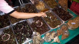 Ecco la farina di scarafaggi: un modo per provvedere alla fame del pianeta