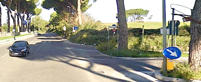 Dopo i cinghiali, è emergenza alberi a Roma: pino crolla su auto a via Cassia