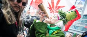 """Cannabis, """"Avvenire"""" attacca: «Politici antiproibizionisti, non fumatevi la testa»"""