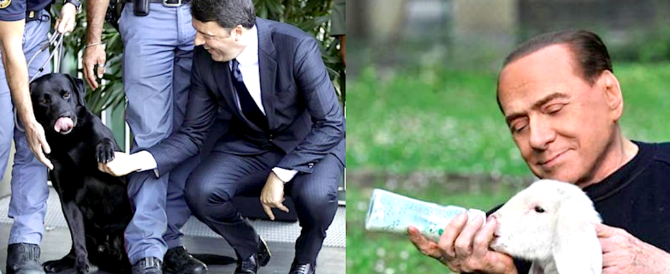 """Renzi contro il Berlusconi animalista: """"Brutte scene"""". Ma i suoi selfie con i cani?"""
