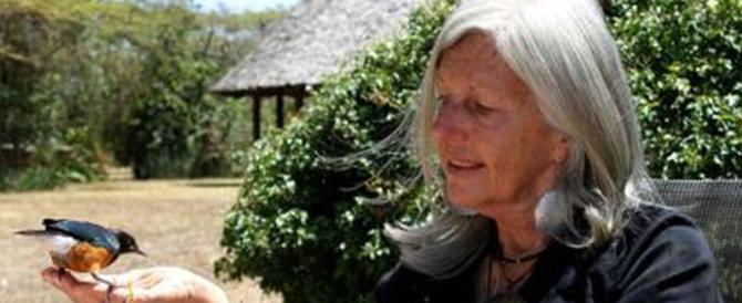 Kuki Gallmann, spari nel suo ranch in Kenya: la scrittrice italiana è grave