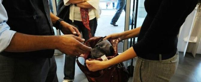 Banda di donne ladre: al centro commerciale con la tecnica antitaccheggio