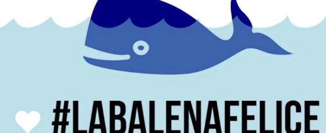 Contro il Blue Whale ecco le 21 regole della balena felice. Boom tra i giovani