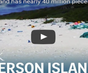 Henderson Island, l'atollo disabitato sperduto nel Pacifico, invaso dai rifiuti (VIDEO)