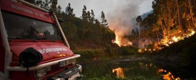 Portogallo, inferno nella foresta: 62 morti carbonizzati nelle loro auto