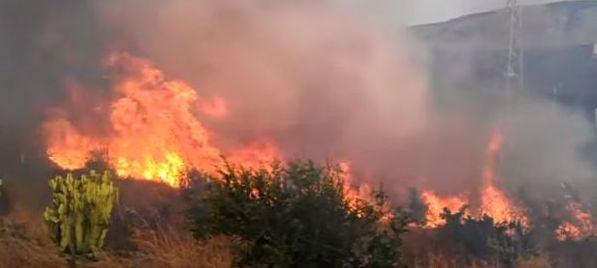Sicilia, è emergenza incendi. Esposto Codacons contro la Regione
