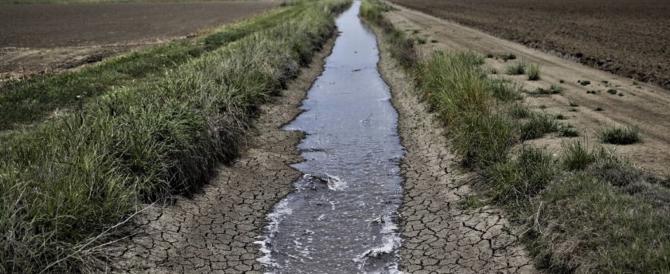 Siccità, è allarme rosso al Nord Italia: dimezzata la disponibilità d'acqua