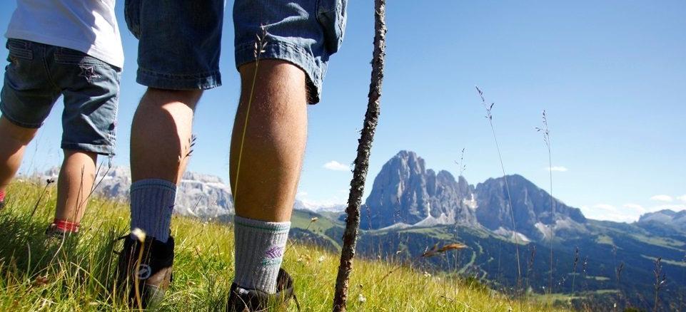 Montagna, assegnate le bandiere verdi: tre al Piemonte, la regione più virtuosa