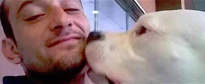 """Alfano si vanta della """"grazia"""" danese al cane Iceberg: tutto merito mio…"""
