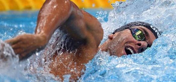 Mondiali di nuoto, Paltrinieri regala un'altra medaglia d'oro all'Italia