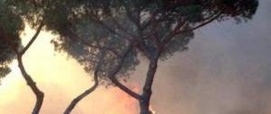 Roma, rogo nella pineta di Castel Fusano: probabile atto doloso (VIDEO)