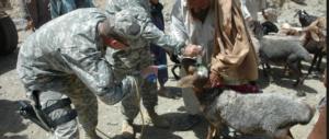 Gli Usa di Obama come l'Italia di Prodi: milioni buttati per le capre in Afghanistan
