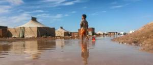 In campo per il popolo Saharawi i Leo di Lazio, Umbria e Sardegna
