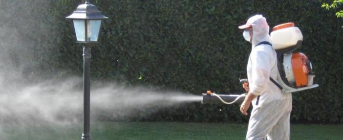 A Reggio Emilia un caso di virus Zika: parte la disinfestazione
