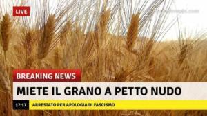 battaglia_grano_mussolini