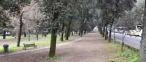 Orrore a Roma: 57enne tedesca stuprata e legata a un palo a villa Borghese
