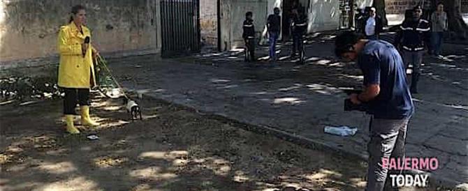 """Nuova disavventura per """"Striscia"""": aggredita l'inviata a Palermo"""