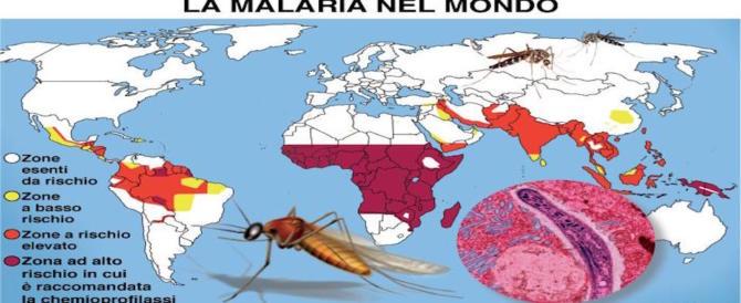 Malaria, l'esperta: le zanzare migrano coi viaggiatori. Bill Gates: è l'animale più letale