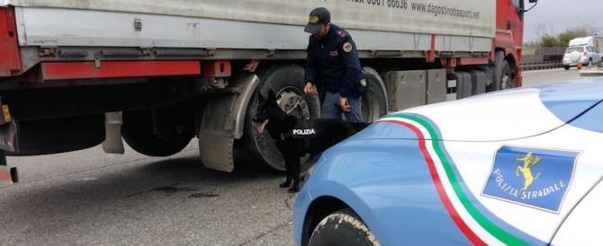 Operazione antiterrorismo in tutta Italia: controllati 27 mila tir: 24 arresti (video)