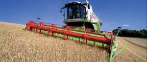 I big della pasta perdono in Tribunale la battaglia sul grano contaminato