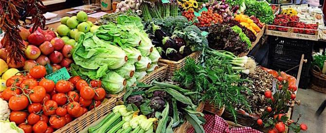 Malgrado le sanzioni russe, galoppa l'export agroalimentare made in Italy