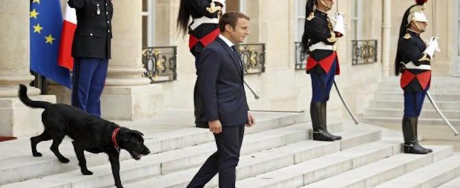 Stragi di Parigi, il figlio della prima vittima diserta le cerimonie: ce l'ha con Macron