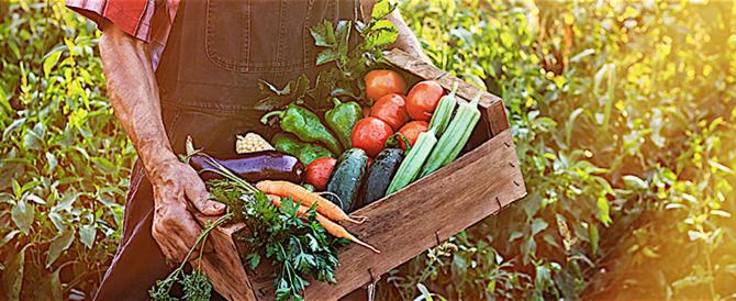 Nuovo provvedimento della Ue contro la nostra agricoltura biologica