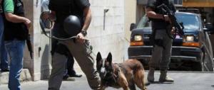Libano, ricominciano i torbidi: rapito un cittadino saudita a nord di Beirut