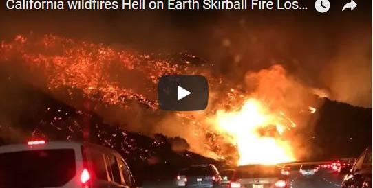 La California brucia: è esodo biblico. In fiamme un'area più vasta di New York (VIDEO)