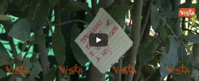 «Spelacchio riposa in pace»: a piazza Venezia i messaggi beffardi dei romani (video)