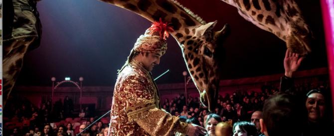 Il Circo Medrano torna in Italia all'insegna della solidarietà