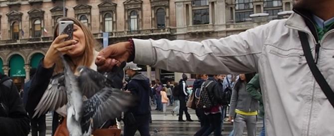 Piazza San Marco in ostaggio degli immigrati: minacciano per vendere il grano