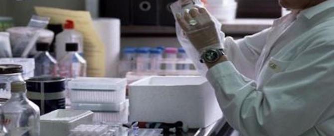 Tumori, ingegnere italiano progetta una capsula per scoprirli senza dolore