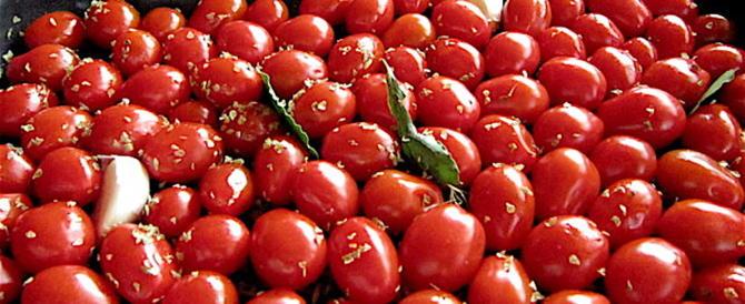 Ora i pomodorini datterini ci arrivano dal Camerun: così la Ue ci distrugge