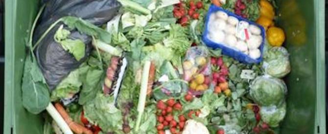 Un popolo di spreconi: buttiamo 37 kg di cibo a testa. E ci costa tantissimo