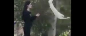 Il femminismo che insegue il #metoo e dimentica la protesta del velo in Iran