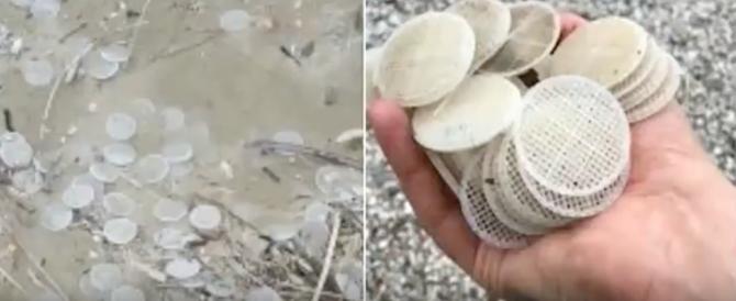Svelato il mistero dei dischetti di plastica: l'enigma risolto dalla Guardia Costiera