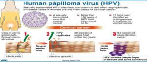 Il 4 marzo è stata la giornata mondiale del Papillomavirus